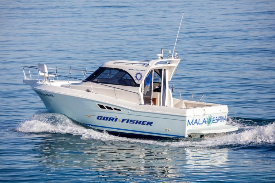 Mala Espina Valencia pesca