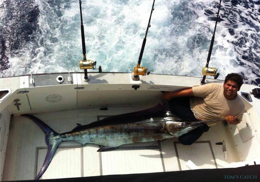 Charter de pesca Miramar