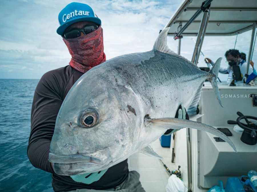 Zona de pesca Maldivas