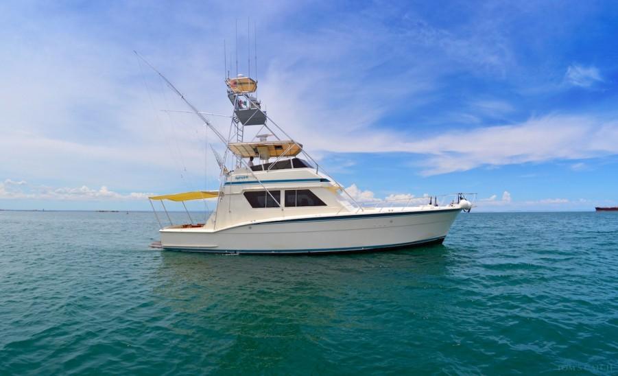 Charter de pesca MV MAMBO