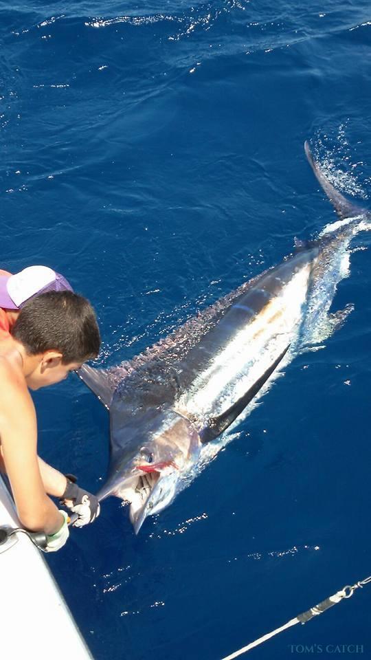 Charter de pesca No Limits Two