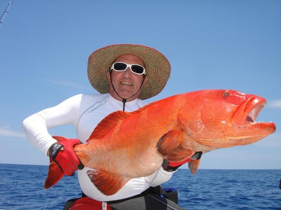 Charter de pesca Open Fishing 8M5