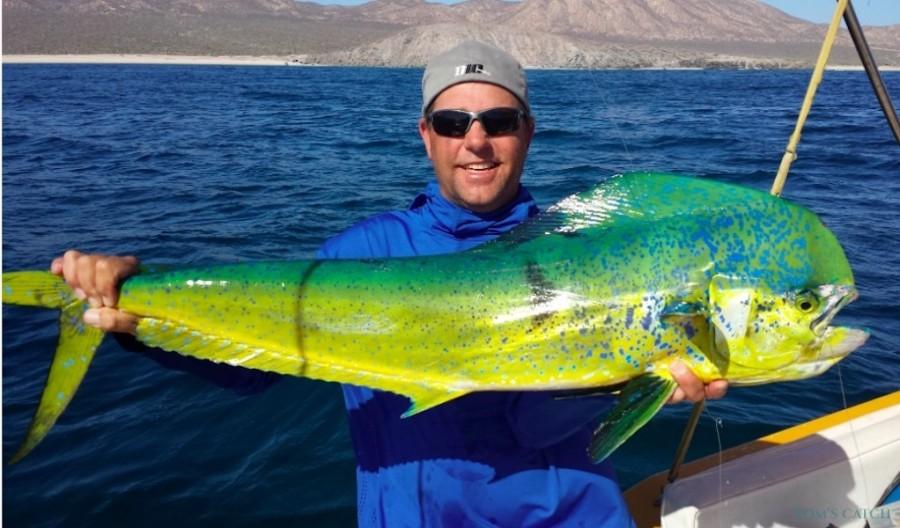 Charter de pesca Open Panga I