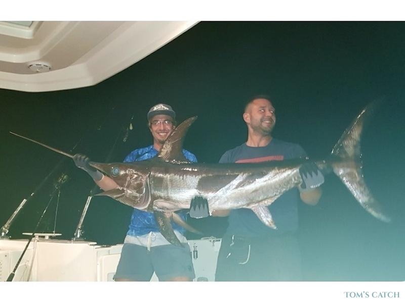 Charter de pesca Pilar 2