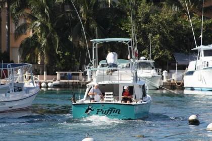 Puffin Riviera Maya pesca