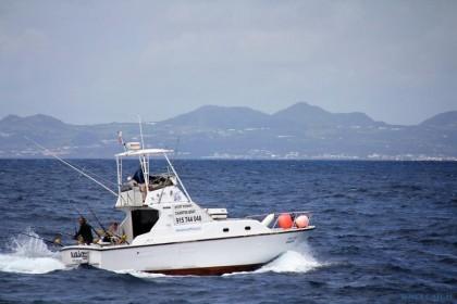 Rabão Azores pesca