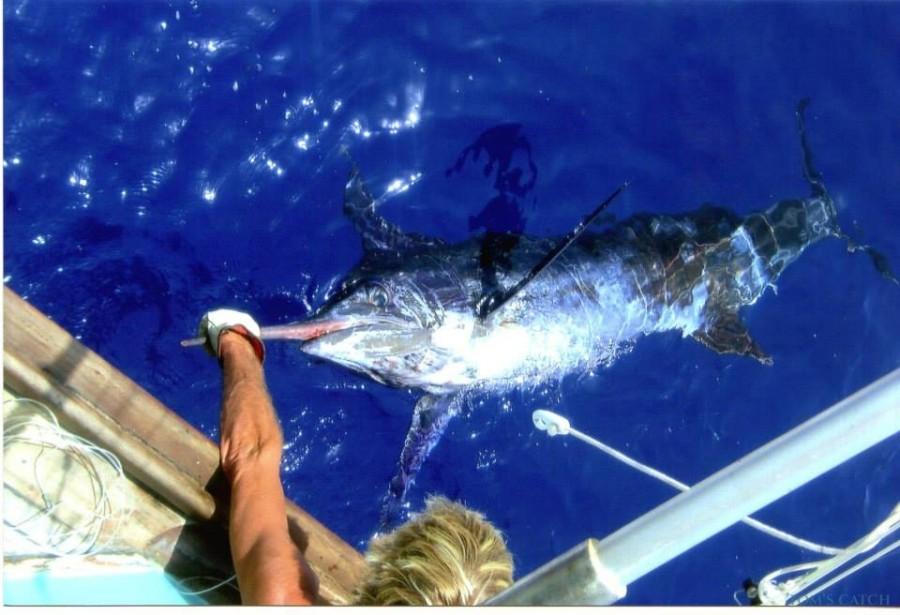 Charter de pesca Razzin Hell