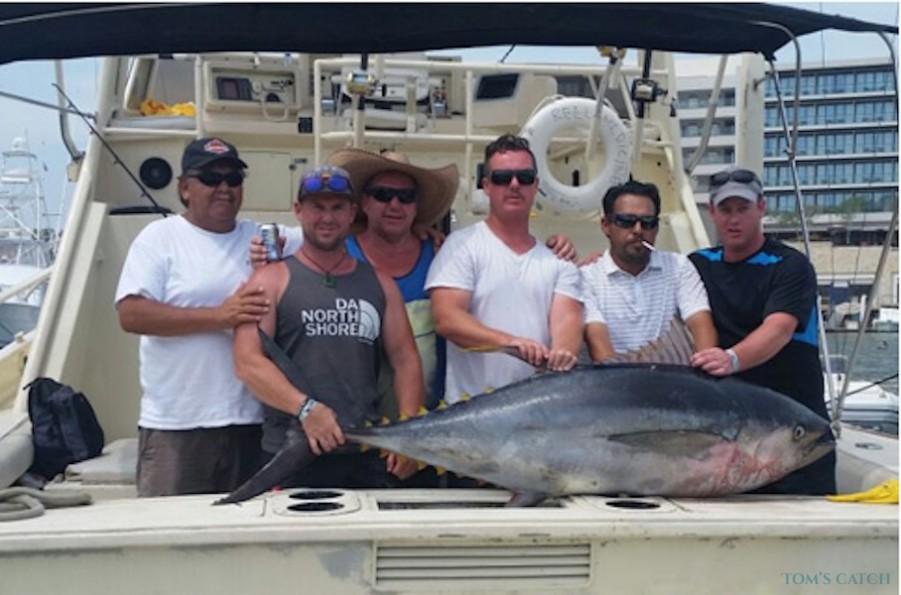 Charter de pesca Reel 38
