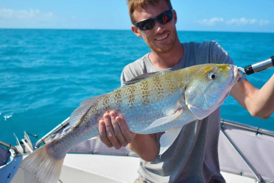 Charter de pesca Reel Addiction