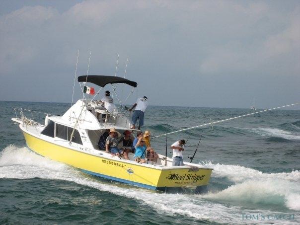 Charter de pesca Reel Screamer