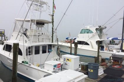 Restless Lady Maryland pesca
