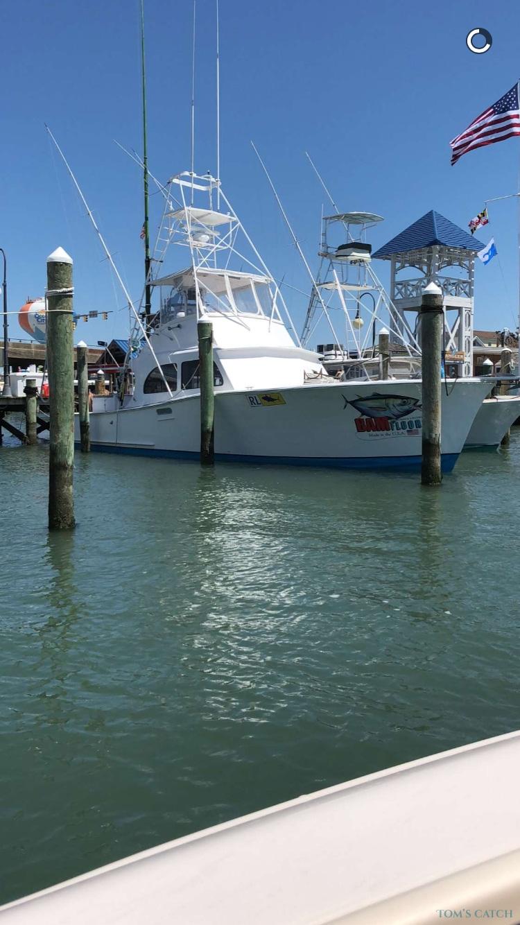 Charter de pesca Restless Lady