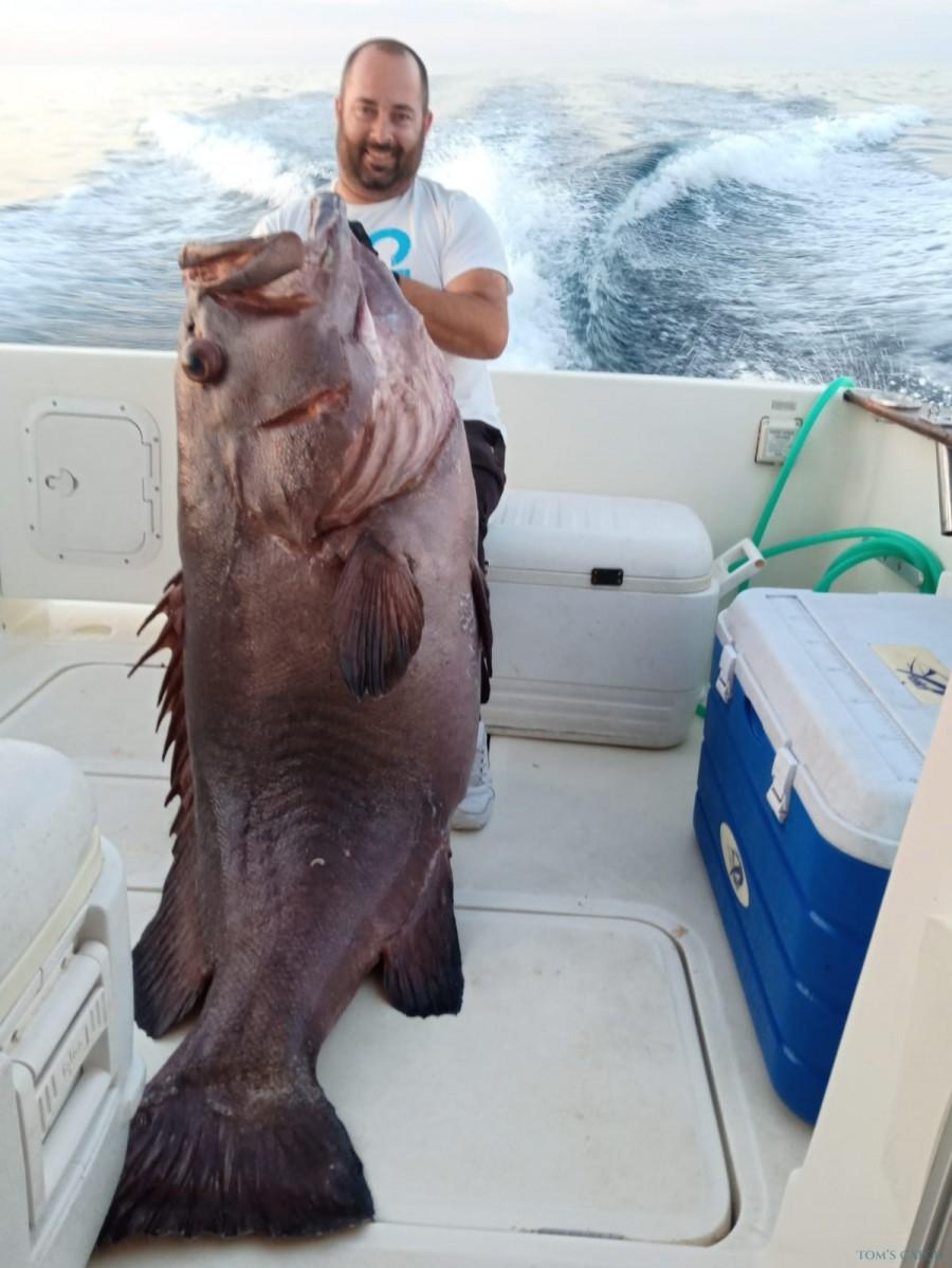 Charter de pesca Rodman 1040