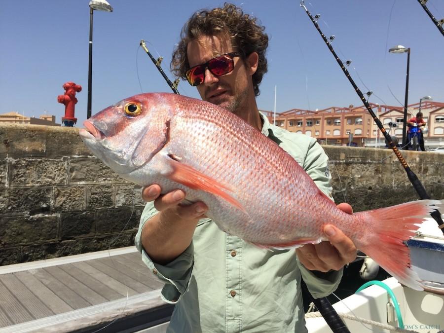 Charter de pesca Rodman 870