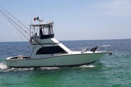 Charter de pesca Samaki
