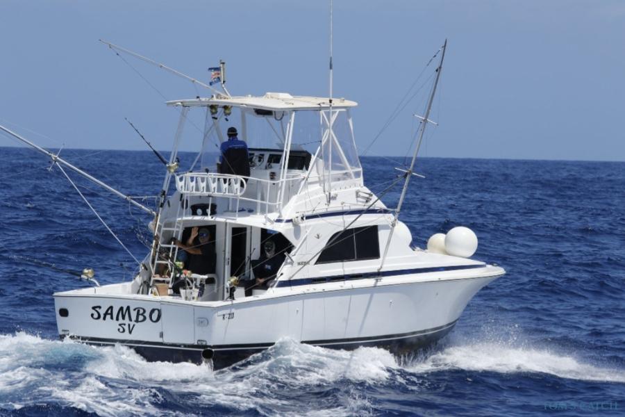 Charter de pesca Sambo