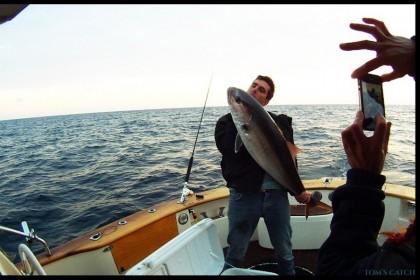 Sciallino 34 Italia pesca