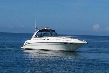 Charter de pesca Sea Ray I