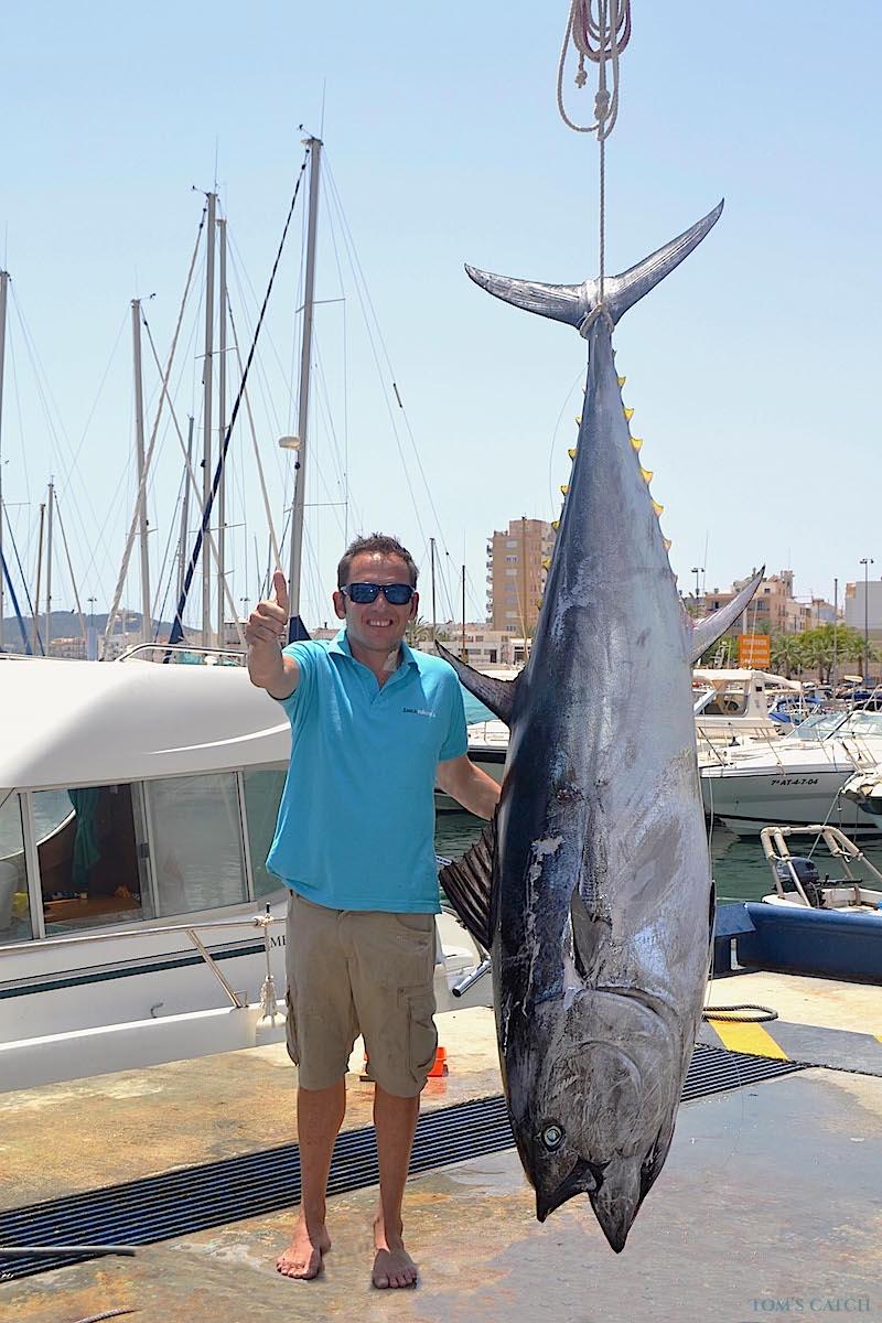 Charter de pesca Sedal