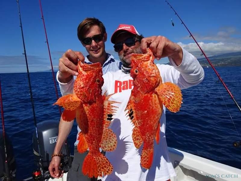 Charter de pesca Seriole