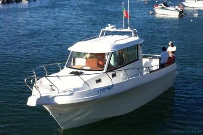 Charter de pesca Silcar 980