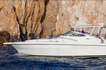 Charter de pesca Speedwell