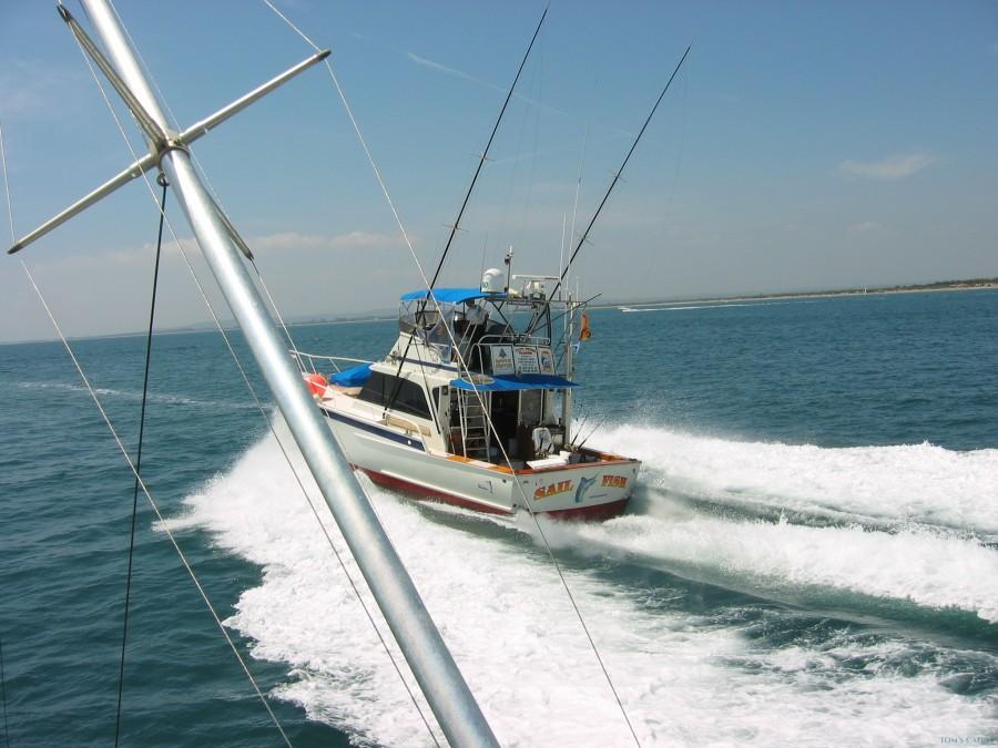 Charter de pesca Striker 44