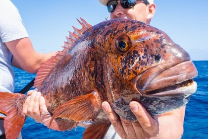 The Fins Fuerteventura pesca