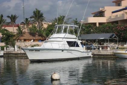 Top Gun Puerto Aventuras pesca