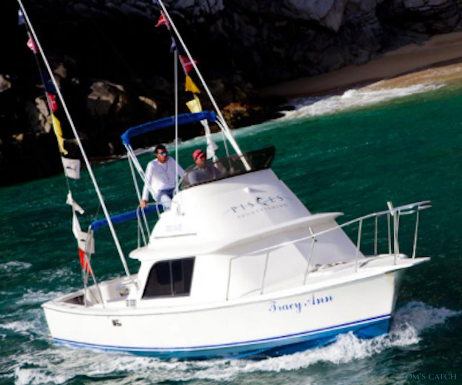Charter de pesca Tracy Ann