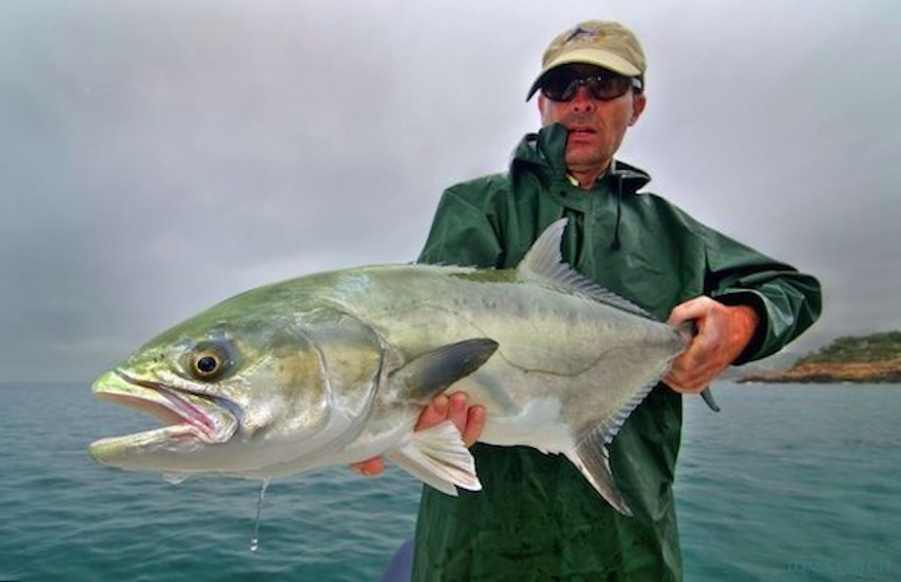 Charter de pesca Triakis 21