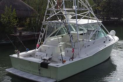 Wasabi 35 Cabo Express Puerto Aventuras pesca
