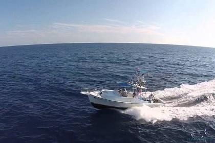Charter de pesca Wild Lady