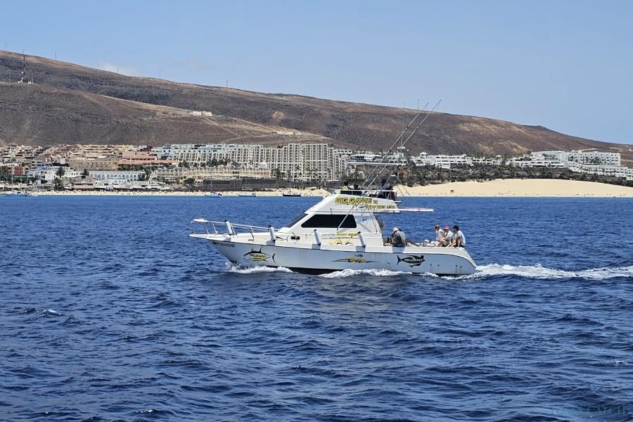 Yellow Fin 1 Fuerteventura pesca