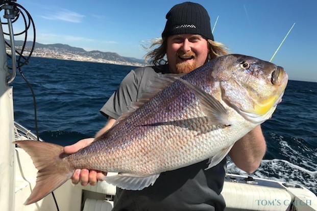 Pesca de Dentón