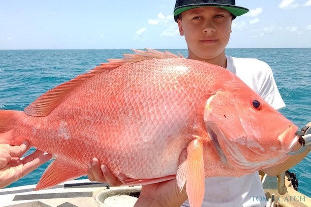 Pesca de Nannygai