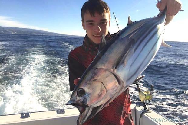 Echter Bonito fischen
