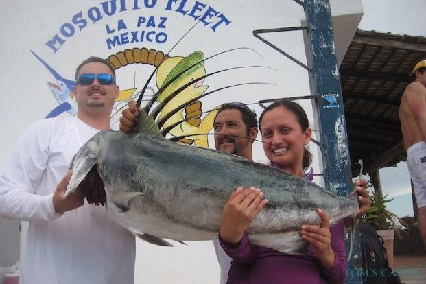 Roosterfish fischen