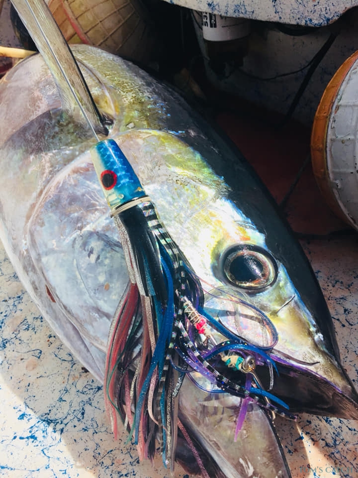 Fishing Charter AK FISHING