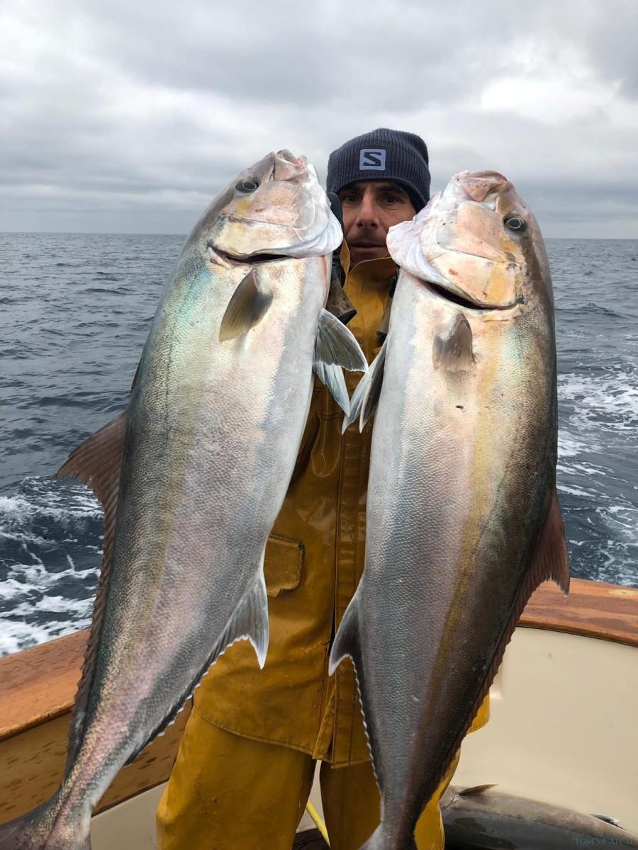 Fishing Charter Arvor 21