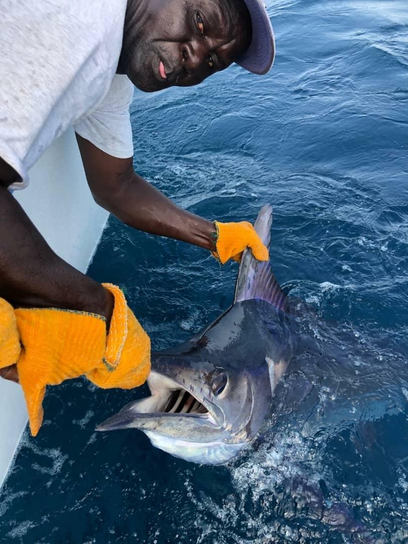 Fishing Charter Baloo