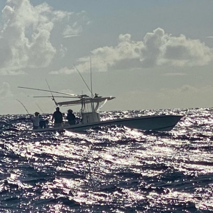 Fishing Charter Balyhoo