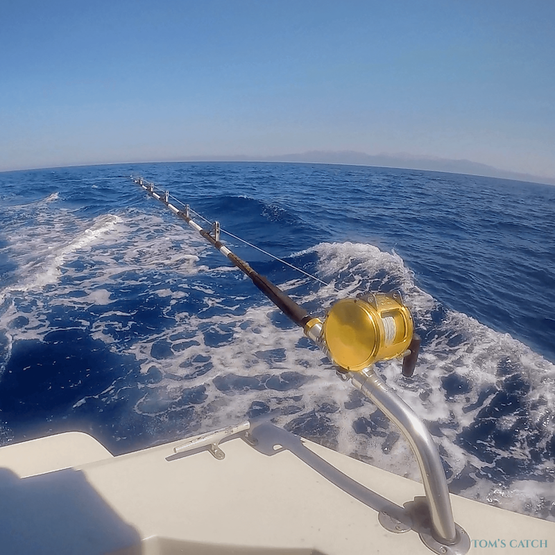 Fishing Charter Bertram 35ft Fishing Crete Island