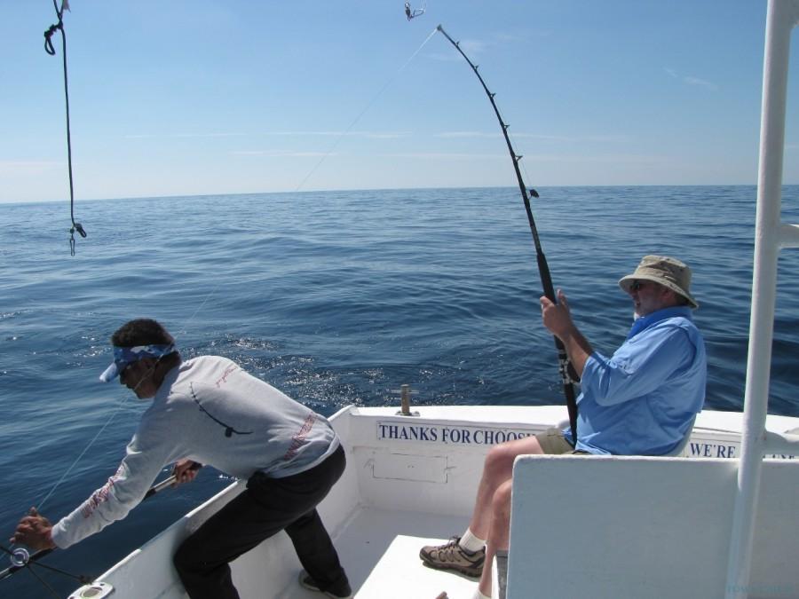 Fishing Charter Bibi Fleet Sportfishing