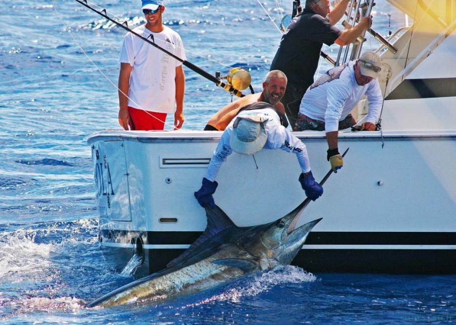 Fishing Charter Brasilia