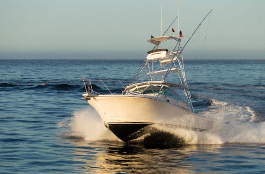 Fishing Charter Cabolero