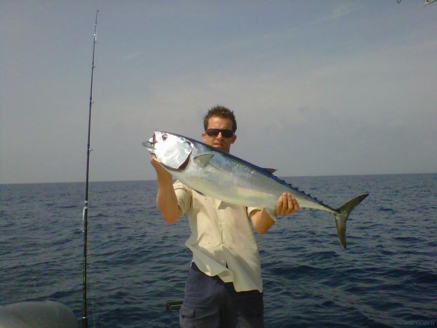 Fishing Charter Cap Camarat 650