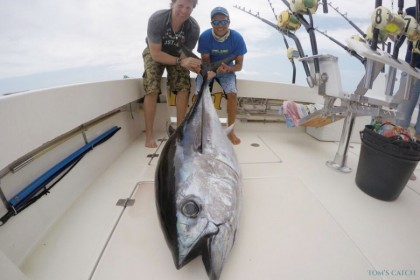 Cavalier Gran Canaria fishing