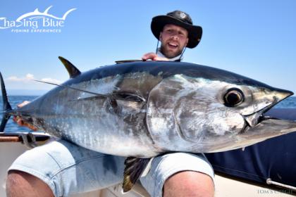 Chasing Blue Tarragona fishing