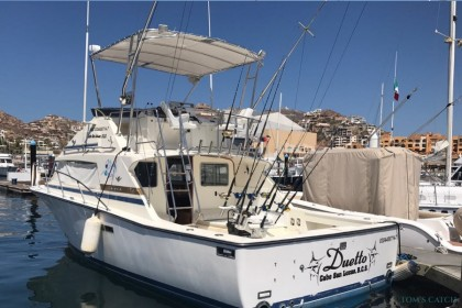 Duetto Cabo San Lucas fishing